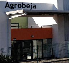 AgroBeja
